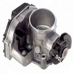 Throttle Bodies from